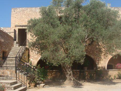 Crete arkadi